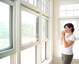 Thermal Window Film